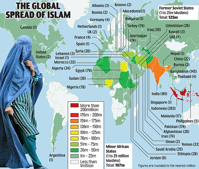 Muslims in the World